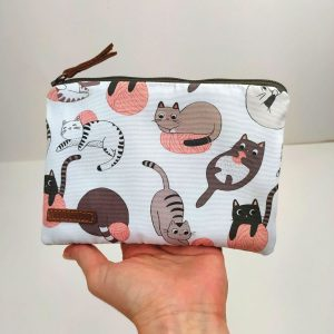 cats pouch holding in hand